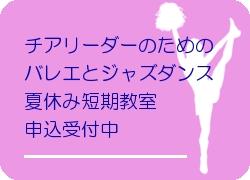 moushikomi_vallet_tanki_bn